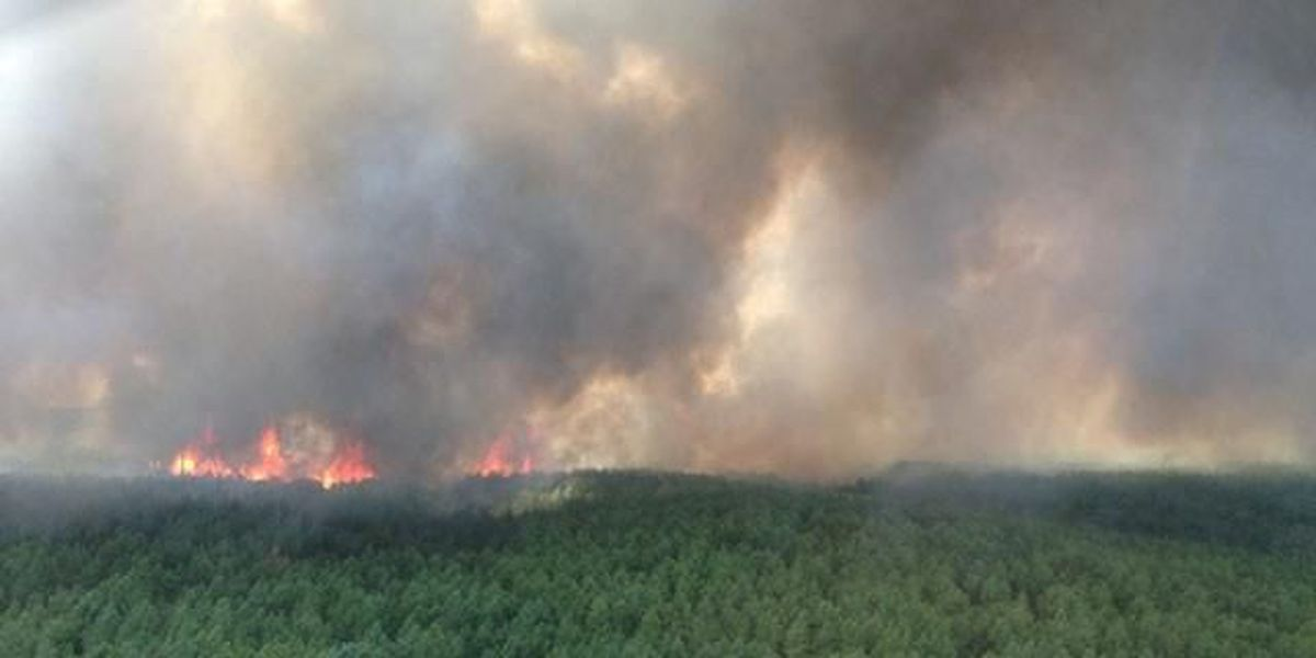 Forest service releases cause of Sunday afternoon fires that burned over 400 acres