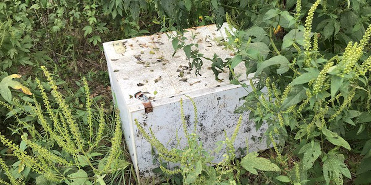 WEBXTRA: Gregg County Sheriff's Office, game warden respond to abandoned freezer near Sabine River