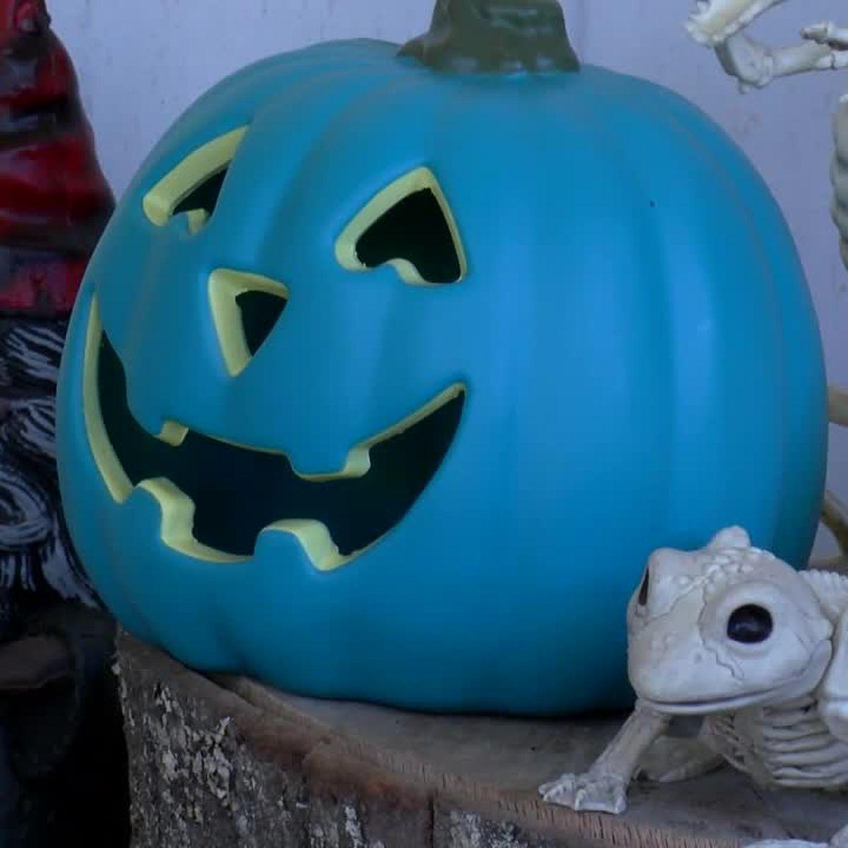 WEBXTRA: Teal Pumpkin Project helps parents find homes with allergen-safe Halloween treats