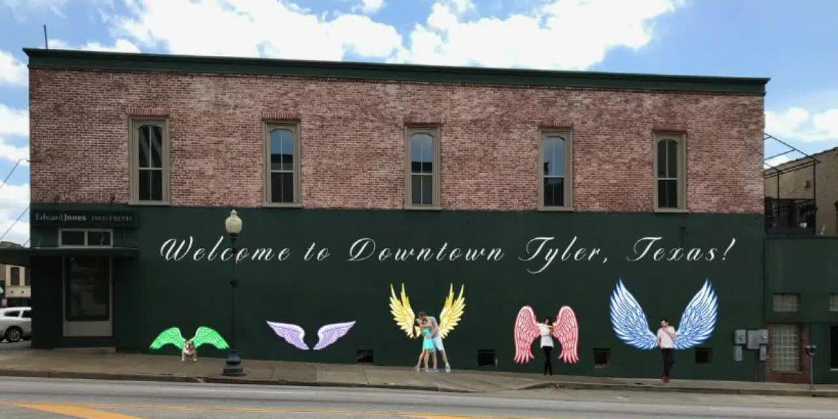 Artists get 'Wings of Tyler' interactive mural underway