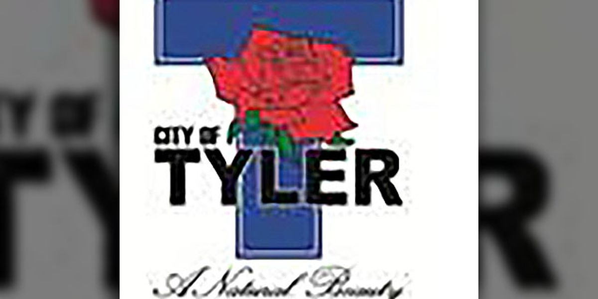 City council to consider plans for low-income housing development in Tyler
