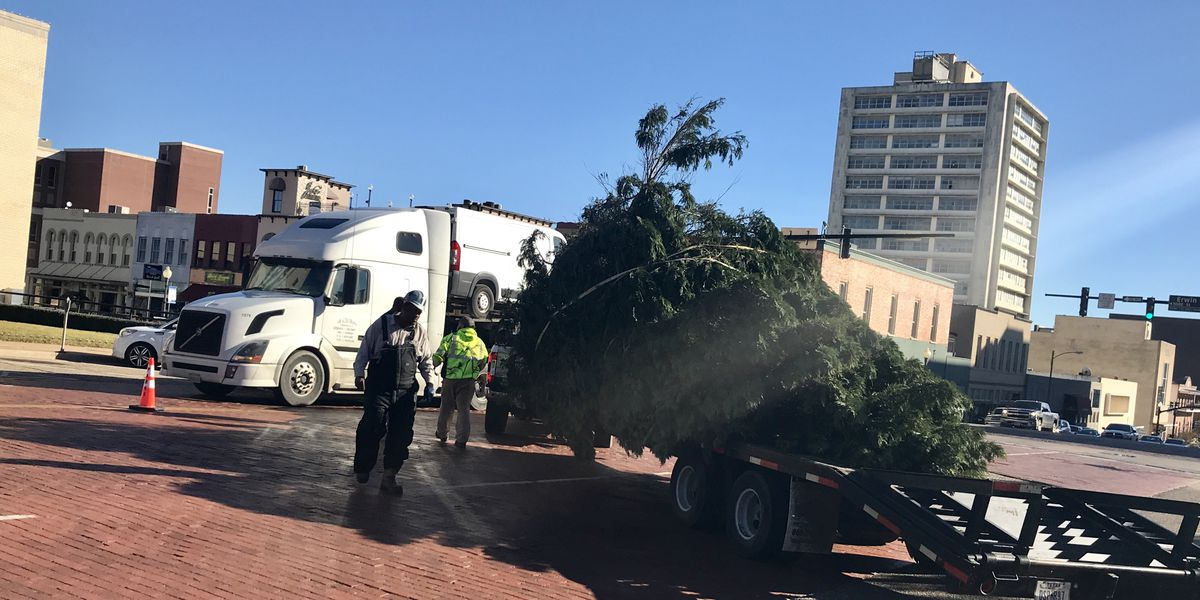 Holiday spirit arrives to downtown Tyler with annual Christmas tree