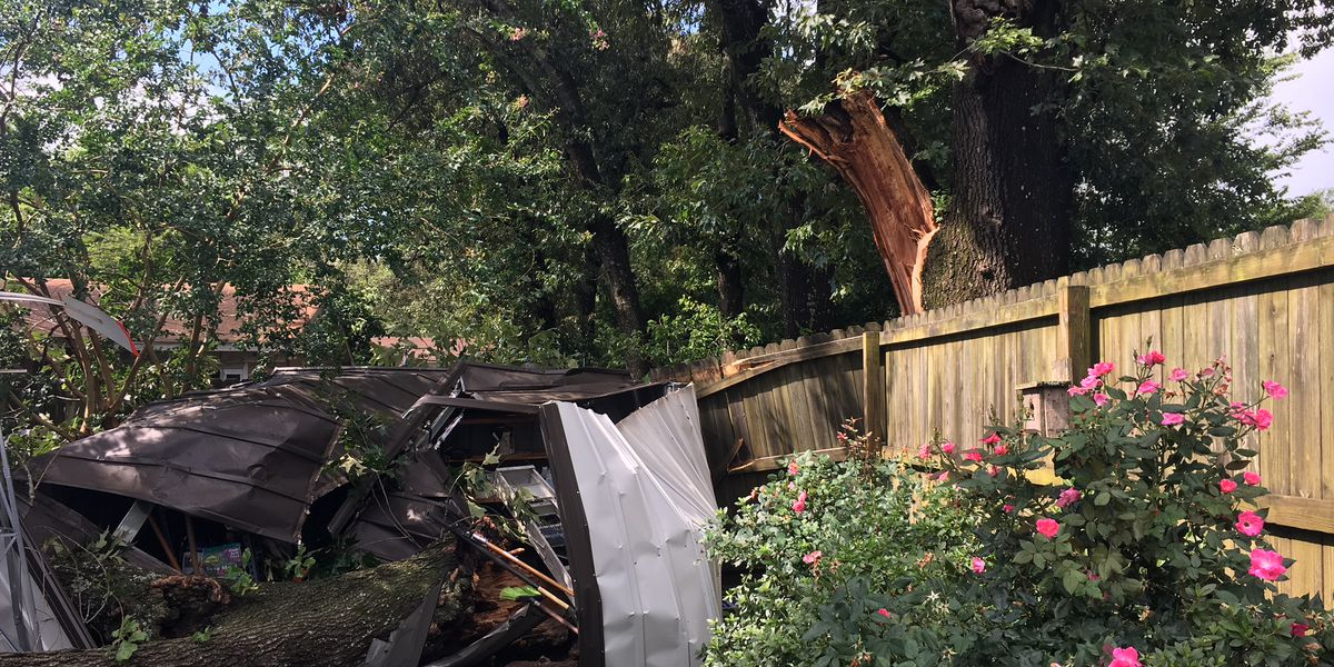 Overnight storms cause damage in Tyler