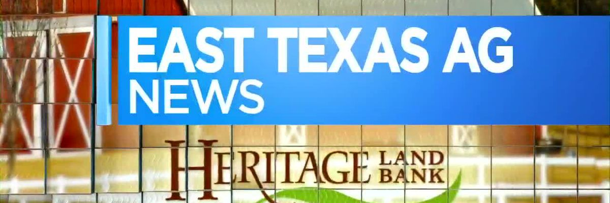 East Texas Ag News: Cattle and Hay Numbers