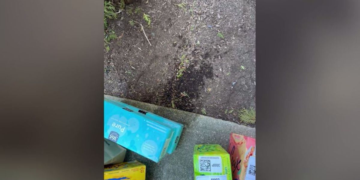 Customer claims Amazon delivery driver peed on his groceries