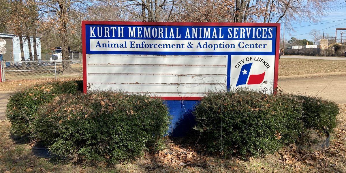 Lufkin animal shelter faces shortfall with Vetting Fund