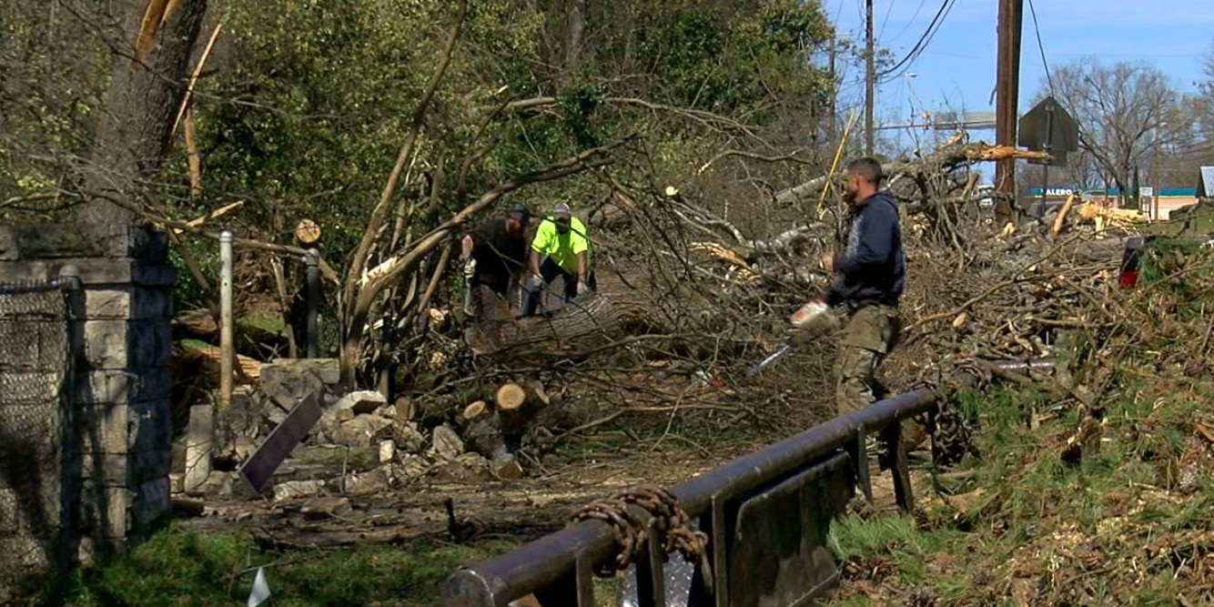 Tree service companies staying busy after storm