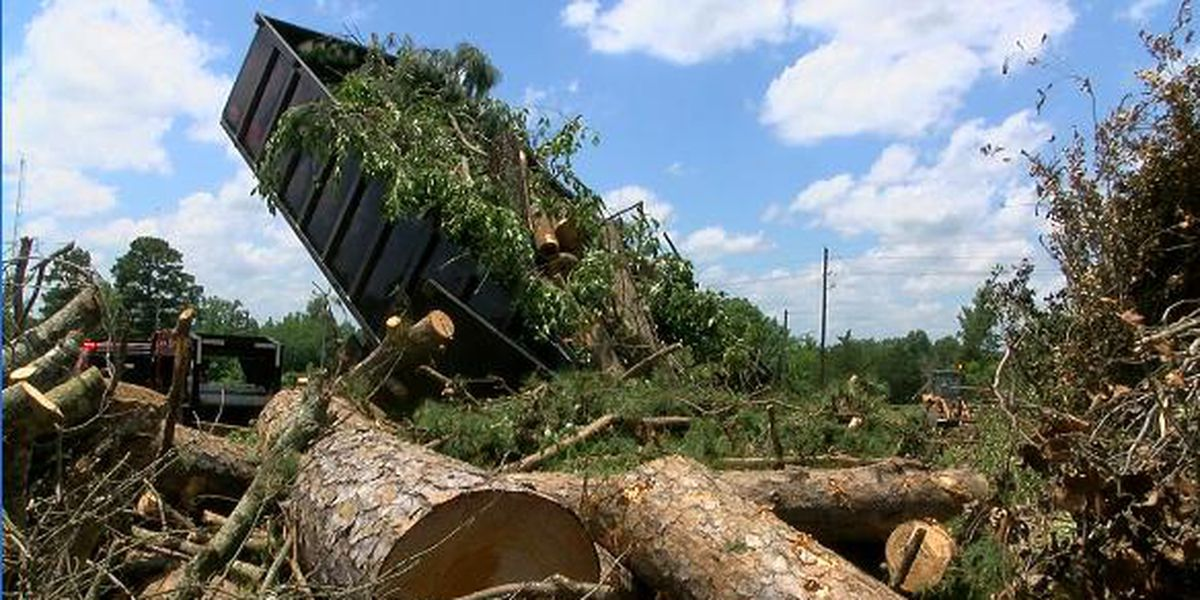 Longview compost site still busy with tree debris from May 8 storm