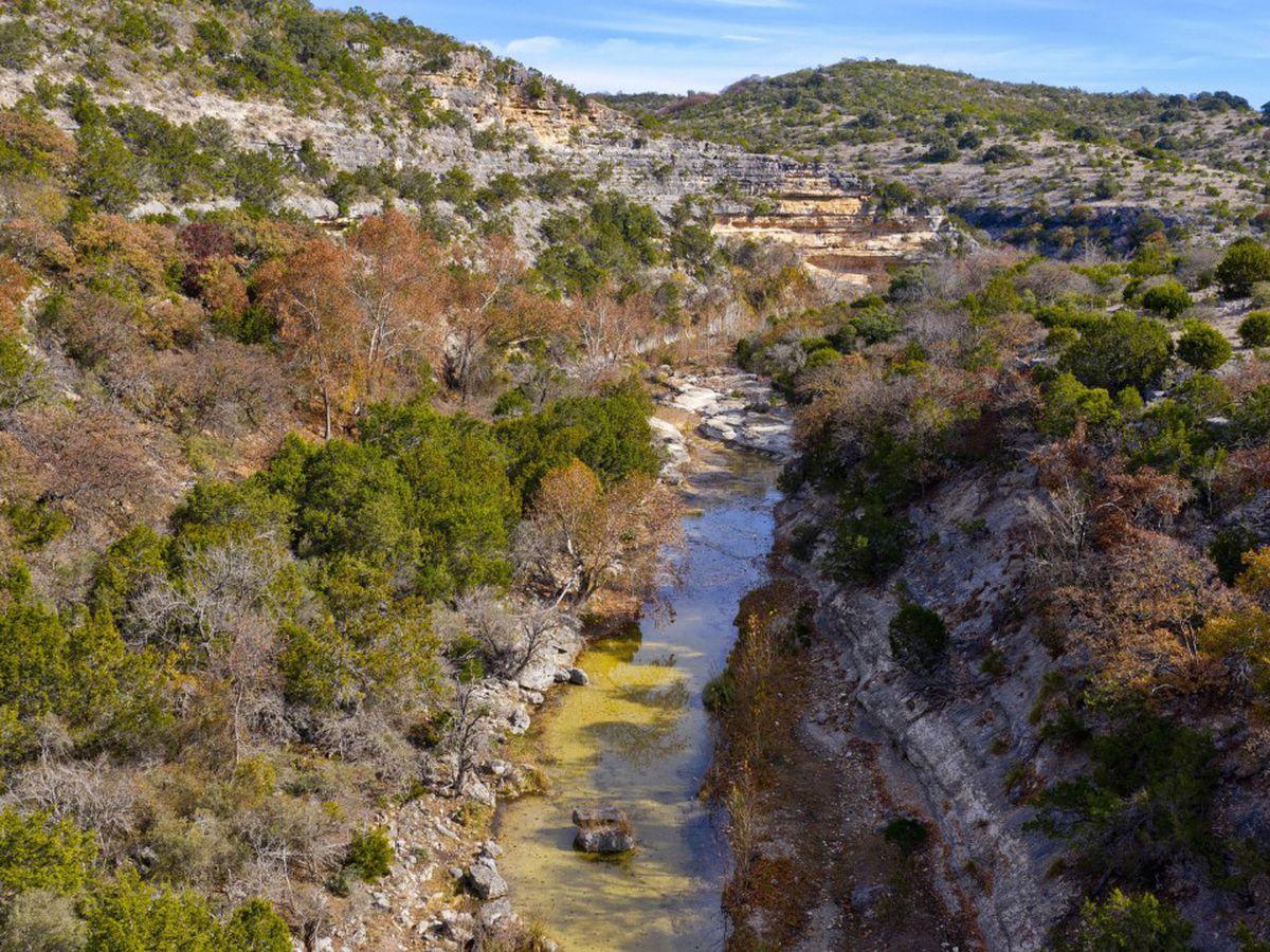 East Texas Ag News: Conservation easements helping Texans