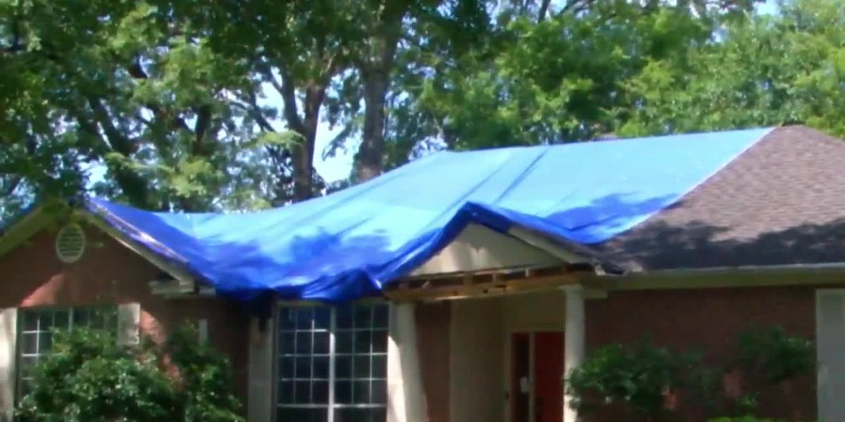 WEBXTRA: Two months after severe storm, signs of recovery still evident in Longview