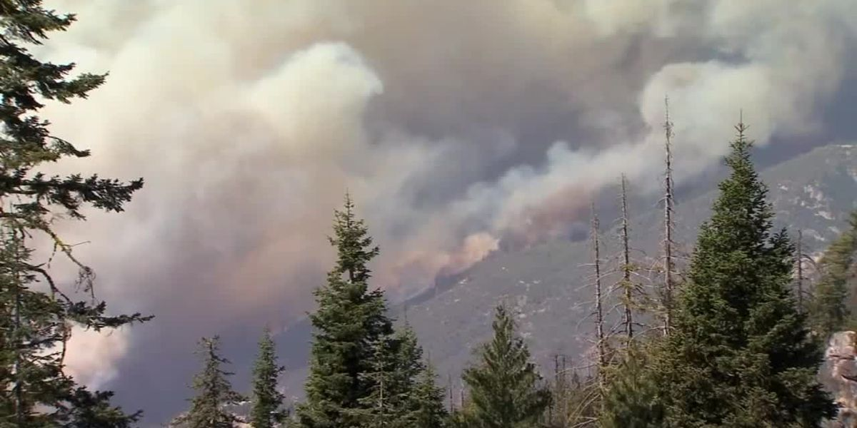 WEBXTRA: Longview firefighters return from fighting California wildfires