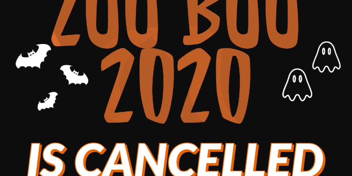 Ellen Trout Zoo cancels Zoo Boo 2020 due to COVID-19