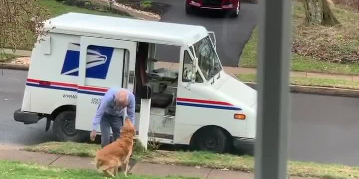 This dog sure loves her postal carrier