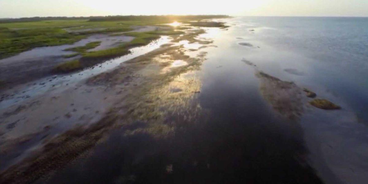 Report: Galveston needs to improve access to public beaches