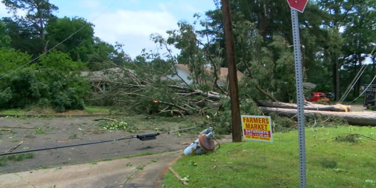 City of Longview provides update on storm cleanup efforts